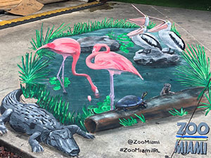 Everglades pond with pelicans and flamingos 3D pavement art