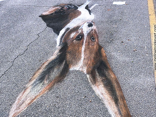 Showing top view skew of 3D dogs chalk art