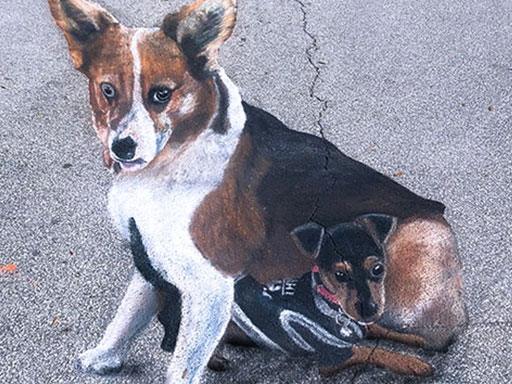 3D dogs chalk art